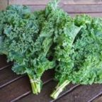Growing and Harvesting Kale