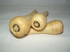 Growing and Harvesting Parsnips